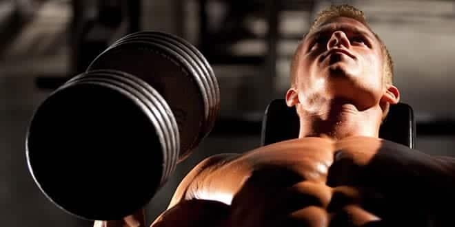 como ganhar massa muscular no peito
