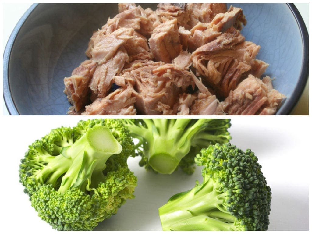 脂肪マグロとブロコロを失う食品