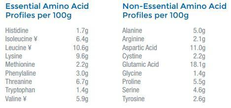 Myprotein Impact Whey Aminogram