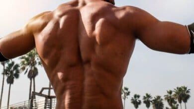 meilleurs exercices pour le dos