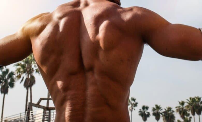 Photo de Quels sont les meilleurs exercices pour le dos?