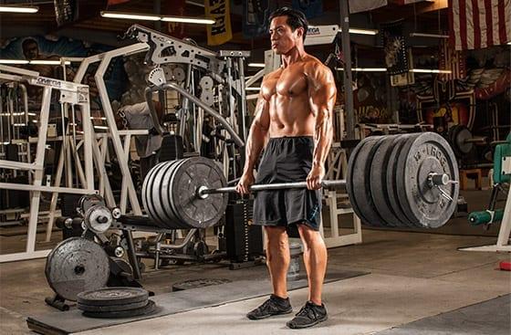 筋肉量を得る