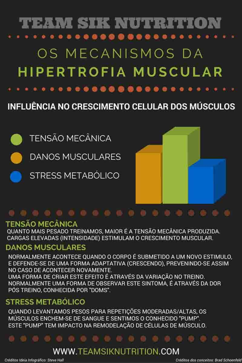 O que é a hipertrofia e como a podes optimizar