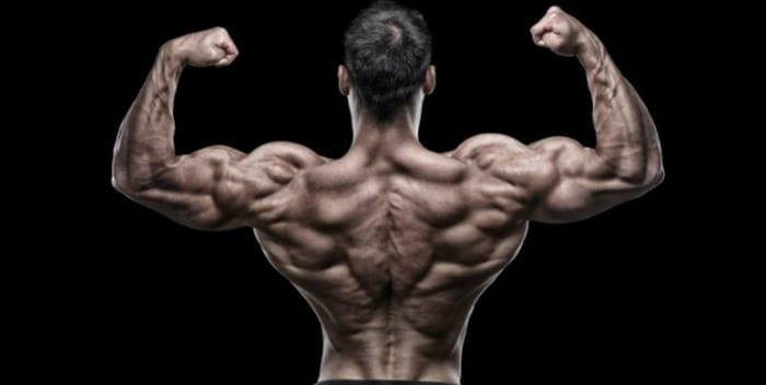 quanta proteína preciso