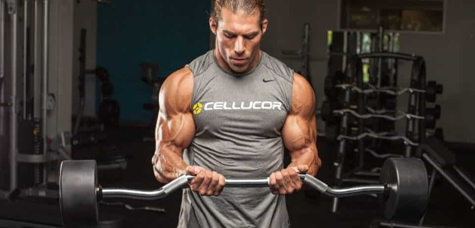 curl bicep one of the best exercises