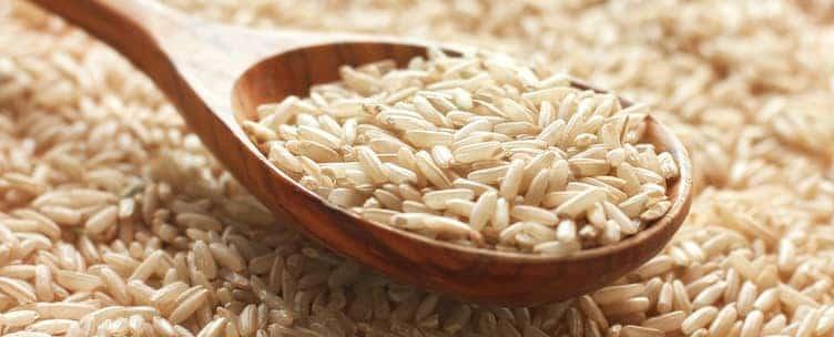 arroz integral magnésio