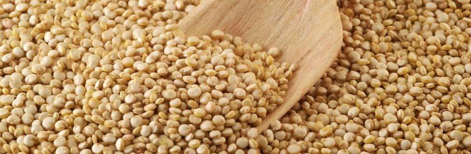 quinoa magnésio
