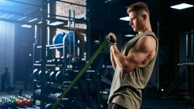 les biceps et les triceps lèvent les bras