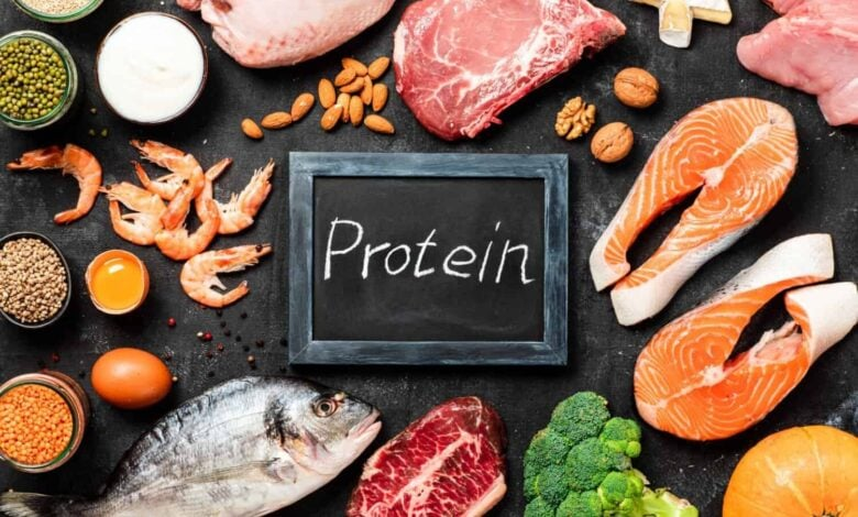 Protein, what is it and what is it for?