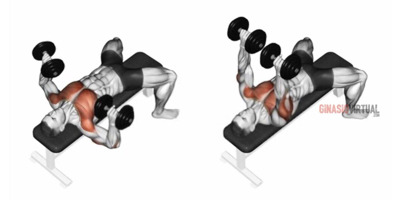 exercícios para o peito com halteres