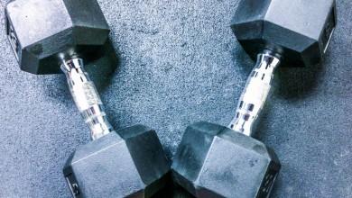 7 exercícios o treino de ombros