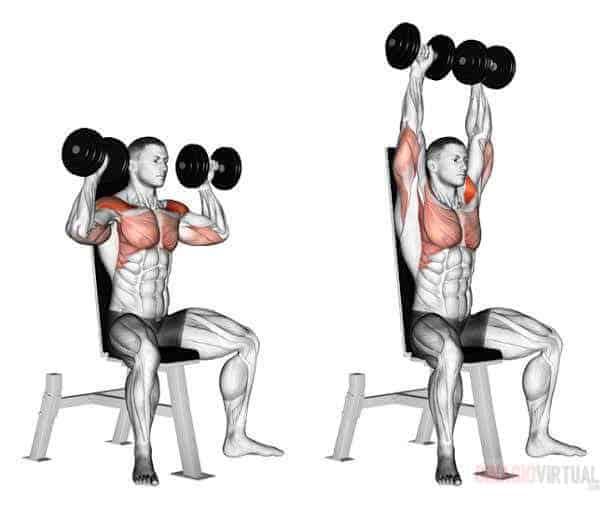 7 Übungen für beeindruckende Schultern