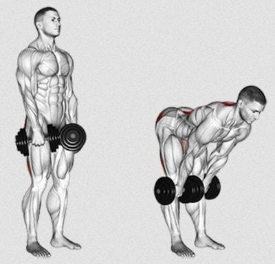 Eigengewicht mit gestreckten Beinen